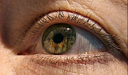Зрение дальнозоркость лечение народными средствами